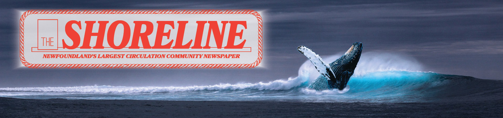 The Shoreline News
