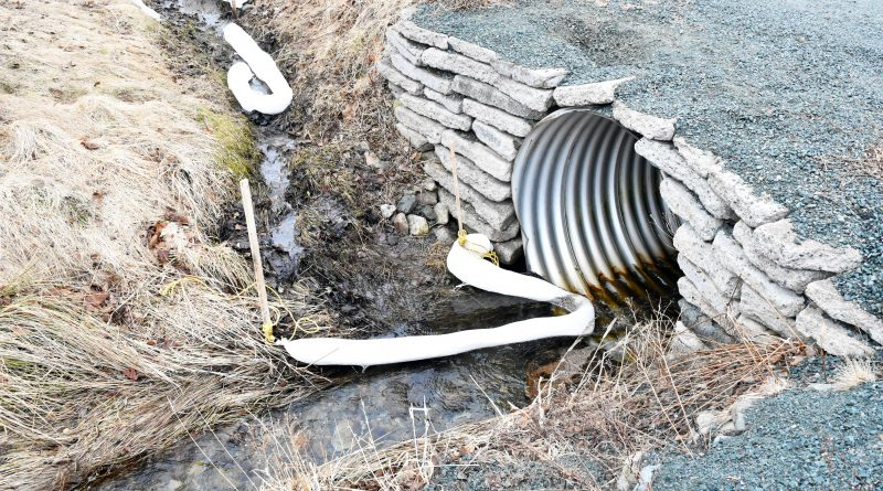 Topsail oil spill has council reviewing policy